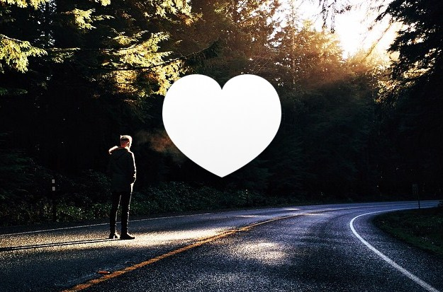 likeSend_2014-1102-145522